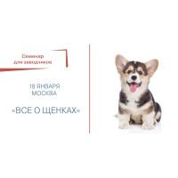 Семинар для заводчиков «Всё о щенках» 18 января (Москва)